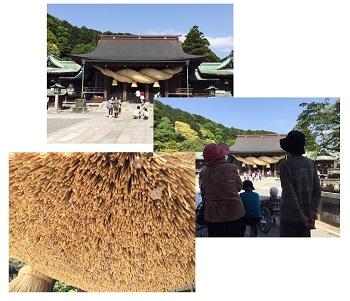 宮地嶽神社5-1.jpg