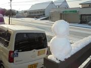 雪(*^。^*)