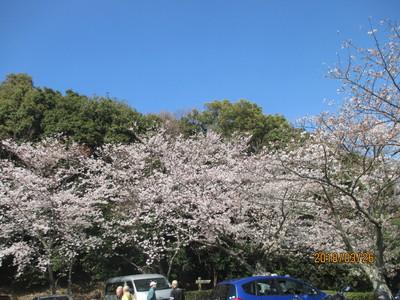東郷公園 1.JPG