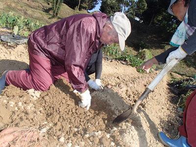 芋掘り.JPG